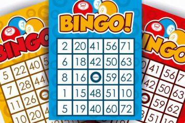 Bingo vragen