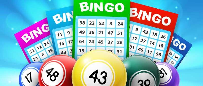 Wat is bingo